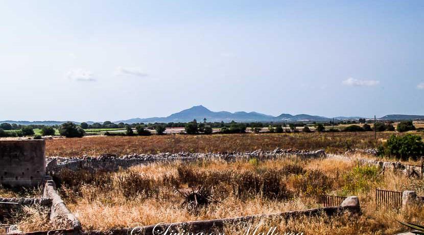 LOM0009-06 Panoramablick zum Berg San Salvador
