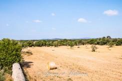 LOM0009-07 Panoramablick auf die Umgebung