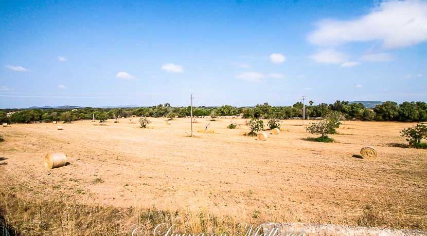 LOM0009-08 Panoramablick auf die Umgebung