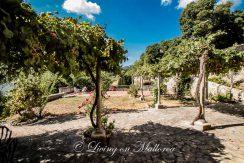 LOM0022-22 Garten