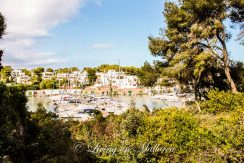 LOM0004-01 Blick vom Grundstück auf den Hafen Cala D'Or